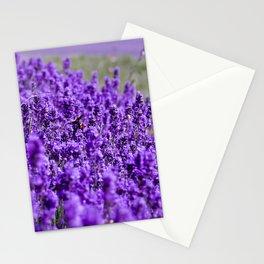 Lavandula Stationery Cards