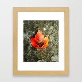 The Last One Standing Framed Art Print