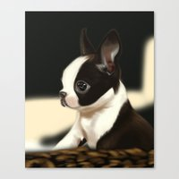 puppy Canvas Prints featuring Puppy by EliseBrave