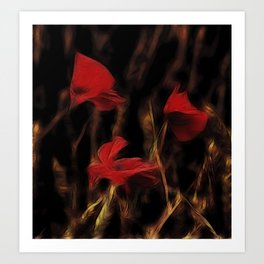 Glowing poppys Art Print