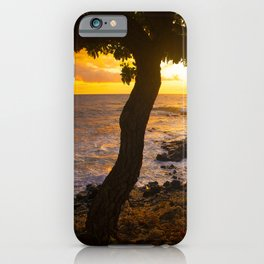 Two Trees In Tropical Paradise Sunset iPhone Case