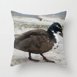 Short Legged Duck at Jensen Nature Reserve Throw Pillow
