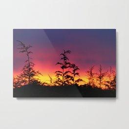 Sunrise two Metal Print