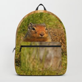 Twitchy Nosed Columbian Ground Squirrel Backpack