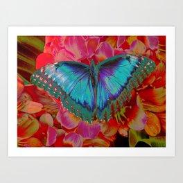 Extreme Blue Morpho Butterfly Art Print