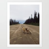 fox Art Prints featuring Road Fox by Kevin Russ