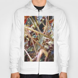 Dragon Fight    [PLANTS]   [VINES] Hoody