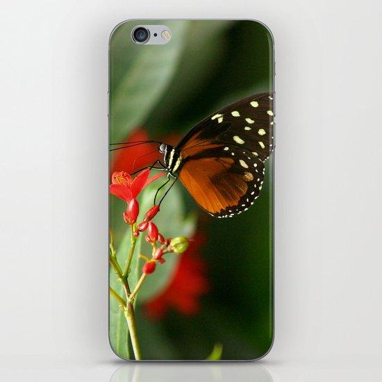 Tropical Scene iPhone & iPod Skin