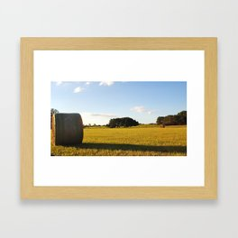 hay there Framed Art Print