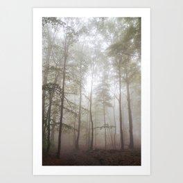 Autumn's Fog Art Print