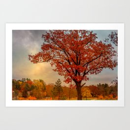Red oak over reservoir Art Print