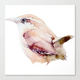 Watercolor Wren Painting Canvas Print