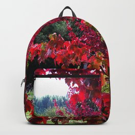 View Between The Branches Backpack