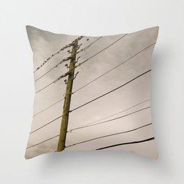 1909 Throw Pillow