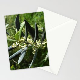 The Olive Blooms in May Stationery Cards