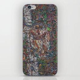 Owl in a Birch Grove iPhone Skin