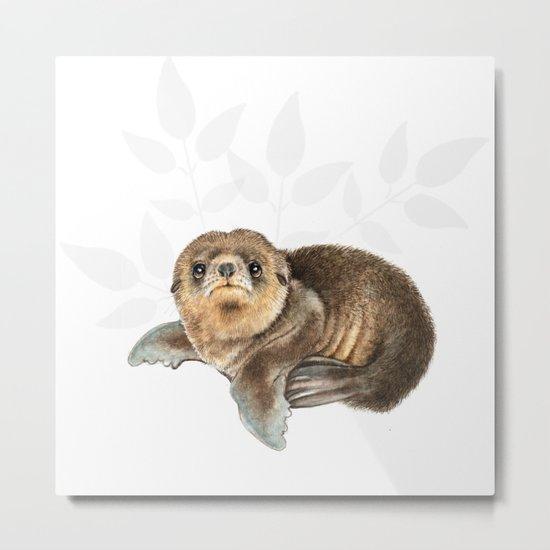 baby seal Metal Print