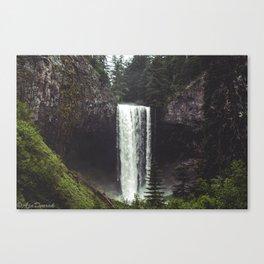 Oregon Falls Canvas Print