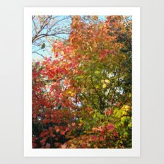 Autumn Leaves I Art Print