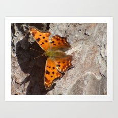 Butterfly 2016 X Art Print