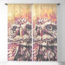owl portrait 5 wslsh Sheer Curtain