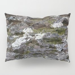 Old tree with character Pillow Sham