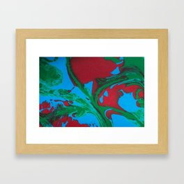 Painted Feathers Framed Art Print