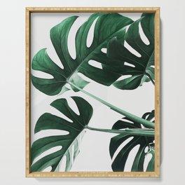 Monstera, Leaves, Plant, Green, Scandinavian, Minimal, Modern, Wall art Serving Tray