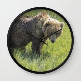 Don't Mess with Mama Bear Wall Clock