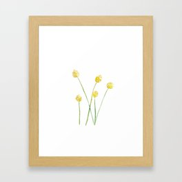 Yellow Billy Button Flowers Framed Art Print