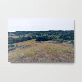 Iowa Prairie Metal Print