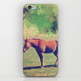 horse iPhone Skin