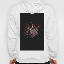 Heart and lights Hoody