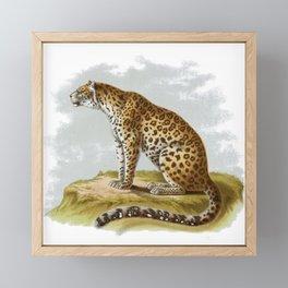 Leopard Panthera Framed Mini Art Print