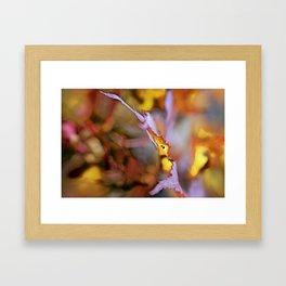 On a Leaf Edge Framed Art Print