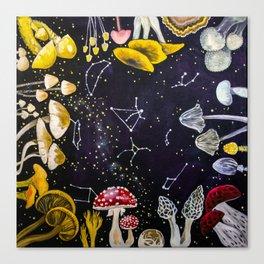 Mushrooms and Stars Canvas Print