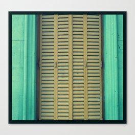 windows with life Canvas Print