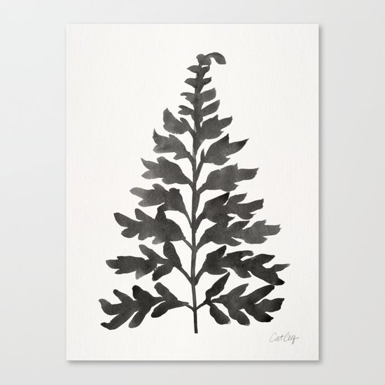 Black Fern Canvas Print