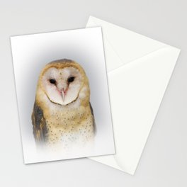 Portrait of a Barn Owl Stationery Cards