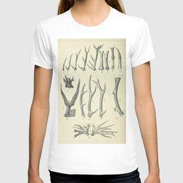Vintage Antlers T-shirt