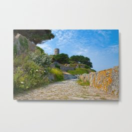 Once Upon a Guernsey Path Metal Print
