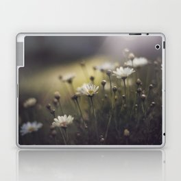 so what if I like pretty things? Laptop & iPad Skin