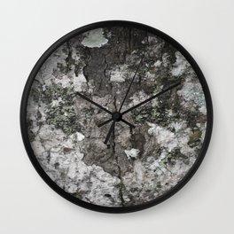 Beautiful rough bark with lichen Wall Clock
