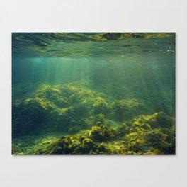 Underwater 2.0 IV. Canvas Print