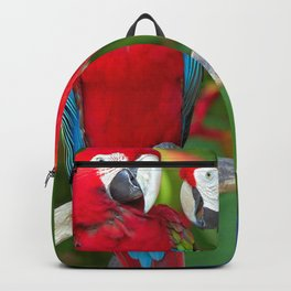 Two Splendid Spectacular Colorful Ara Parrots Flirting Close Up Ultra HD Backpack