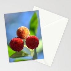 Strawberry tree fruits 8697b Stationery Cards