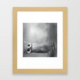Owl Sideways  Framed Art Print