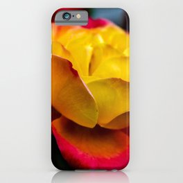 Rainbow Of Color iPhone Case