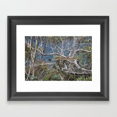 Australiana No. 2 Framed Art Print