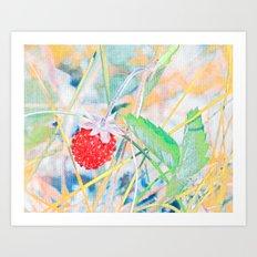Strawberry field. Art Print